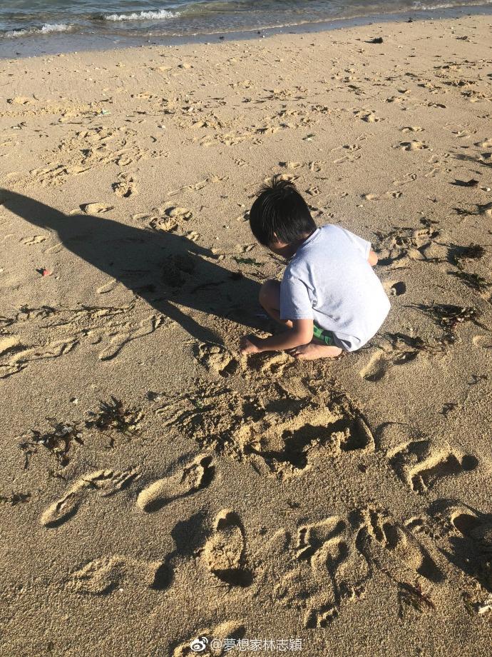 组图:林志颖带kimi海滩捡垃圾做环保 父子背影尽显温馨